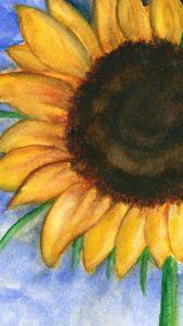 sunflowerwithblueskymobile